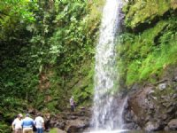 Waterfalls, 207 Ac. Mt. Farm, Cabin : La Suiza De Turrialba : Costa Rica