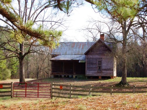3100 Ft River Frontage / 126 Acres : Crawfordville : Taliaferro County : Georgia