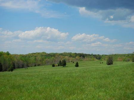 81 Acre Walnut Grove Farm : Roebuck : Spartanburg County : South Carolina
