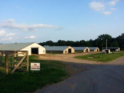 78+/- Acre Poultry & Cattle Farm : Joppa : Morgan County : Alabama