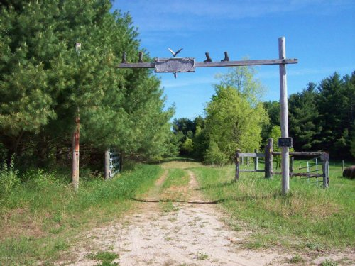 20 Acre Hunting Parcel : Tustin : Osceola County : Michigan