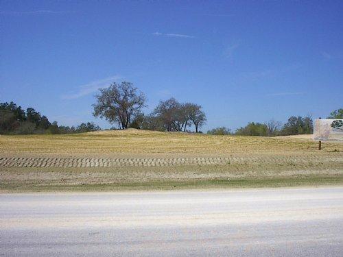 Great Family Estate Property : Weeki Wachee : Hernando County : Florida