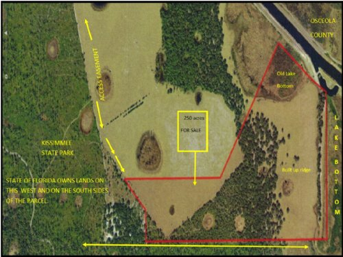 250 Acre Hunting / Cattle Ranch : Lake Wales : Polk County : Florida