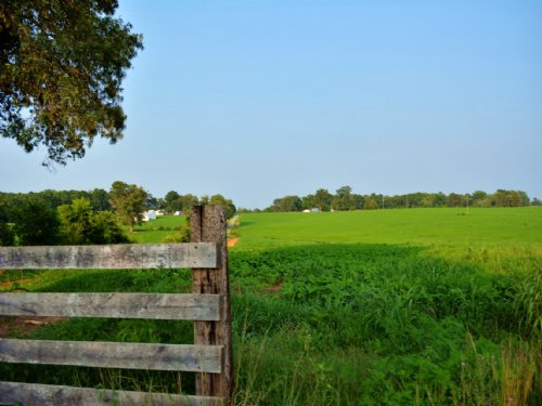 Productive Farm : Scottsville : Albemarle County : Virginia