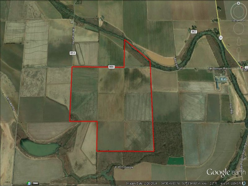 Price Reduced Duck Lease : England : Lonoke County : Arkansas