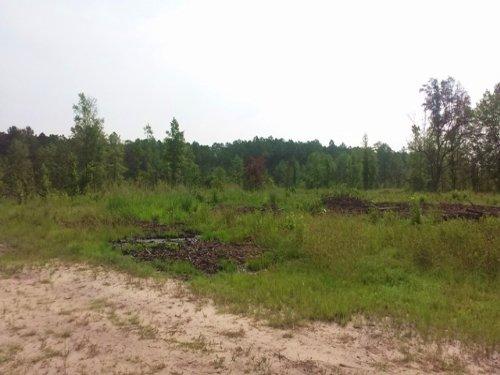 Flatwoods Retreat : Ludowici : Long County : Georgia