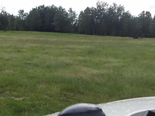 Fairfield Farms - 10.41 Acre Lot : Shelbyville : Bedford County : Tennessee