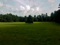 229± Acre Reddick Ranch