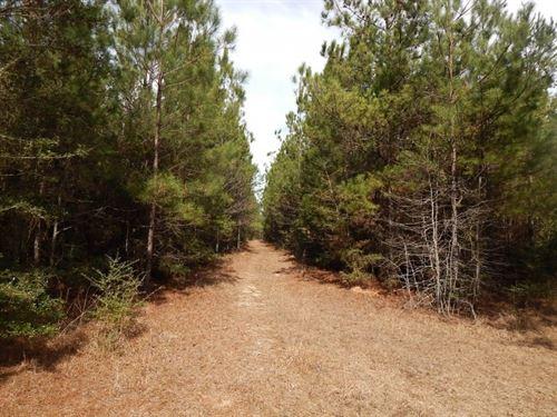 Regan Road, 121582 : Foxworth : Marion County : Mississippi