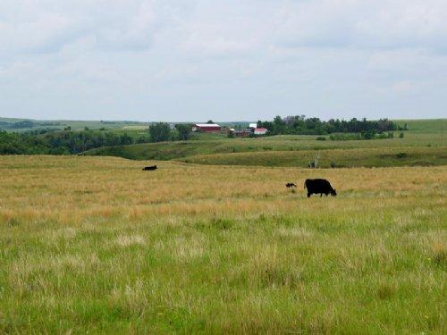 Hartman Ranch : Grassy Butte : McKenzie County : North Dakota