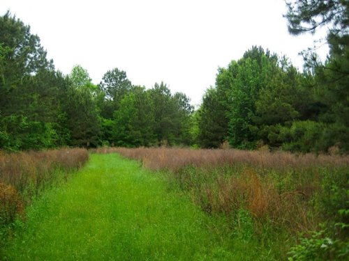 Montgomery Hunting & Fishing Tract : Pike Road : Montgomery County : Alabama