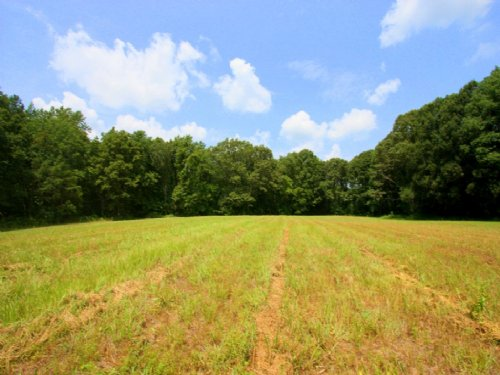 Lovely 10 Acres Conventional Perk : Montpelier : Hanover County : Virginia