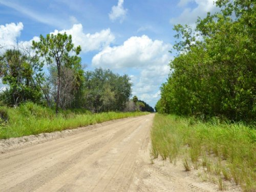 Indian River Farms 40 Acres : Vero Beach : Indian River County : Florida