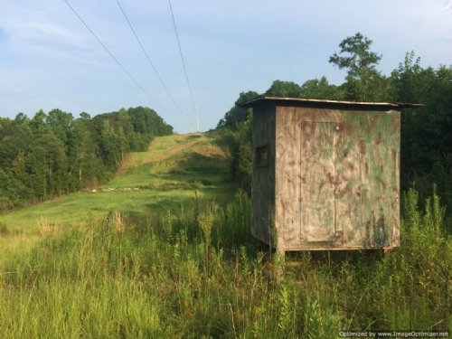 131 Acre Hunting Tract : Meridian : Lauderdale County : Mississippi