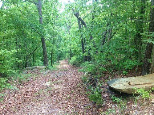 69.2+/- Acres Trammell Motorway For : Sylacauga : Talladega County : Alabama