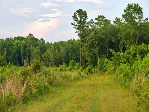 Apalachee Recreational Investment : Tallahassee : Leon County : Florida