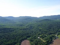 Cobb Brook Forest : Huntington : Chittenden County : Vermont