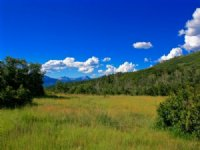 Red Tail Mountain Ranch Lot 18