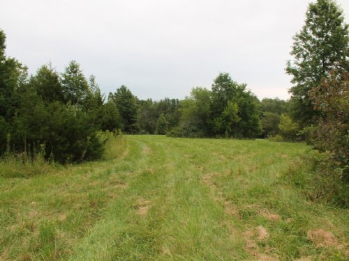 148 Acres County Rd 391 : Kahoka : Clark County : Missouri
