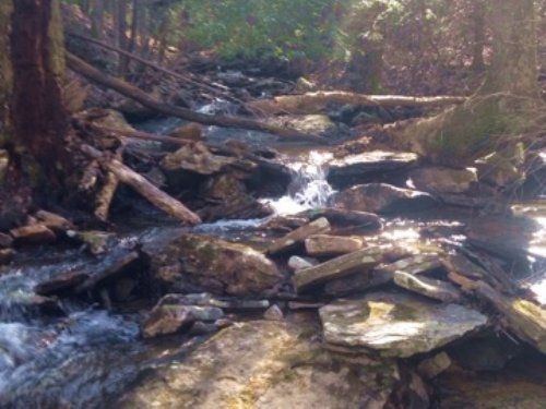 46+/-acres W/amazing View/ Creek : Dunlap : Sequatchie County : Tennessee