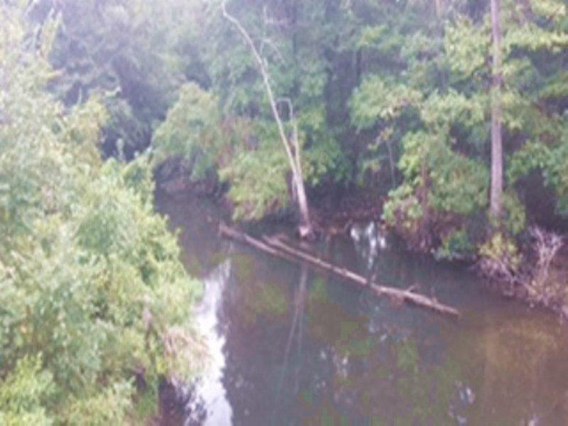 Briar Creek Tract : Sylvania : Screven County : Georgia