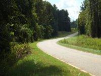 Qdm Timberland Hunting Property : Shellman : Randolph County : Georgia