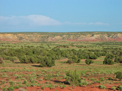 37 Acre Northern Az Ranch : Saint Johns : Apache County : Arizona