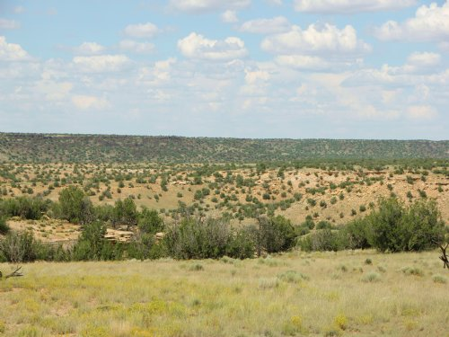 38 Acre Northern Arizona Ranch : Saint Johns : Apache County : Arizona