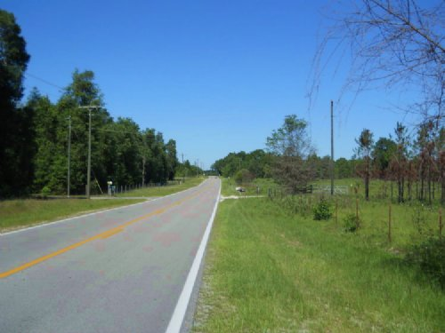 48 Acres On Paved Road : Fort White : Columbia County : Florida