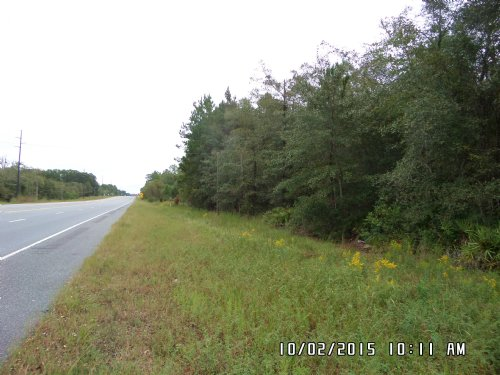 13 Acres Screven Georgia : Screven : Wayne County : Georgia