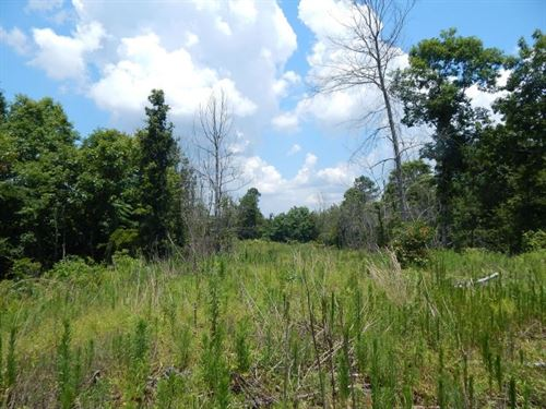 86 Acres In Carroll County In West : West : Carroll County : Mississippi