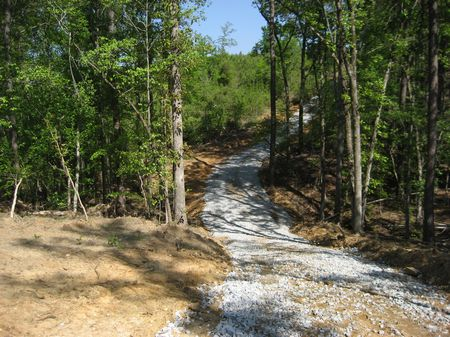 Gorgeous Hunting Tract : Winnsboro : Fairfield County : South Carolina