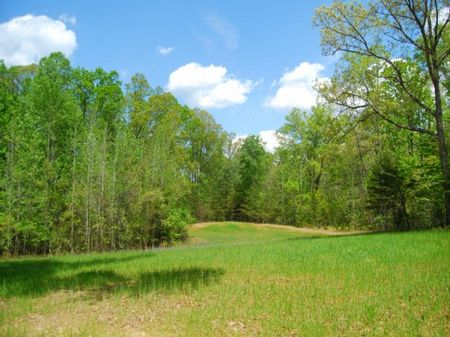 154 Acre Recreational Tract : Pauline : Spartanburg County : South Carolina