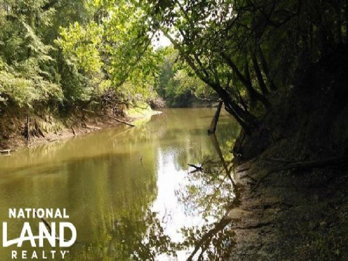 Conecuh River Hunting Land : Goshen : Pike County : Alabama