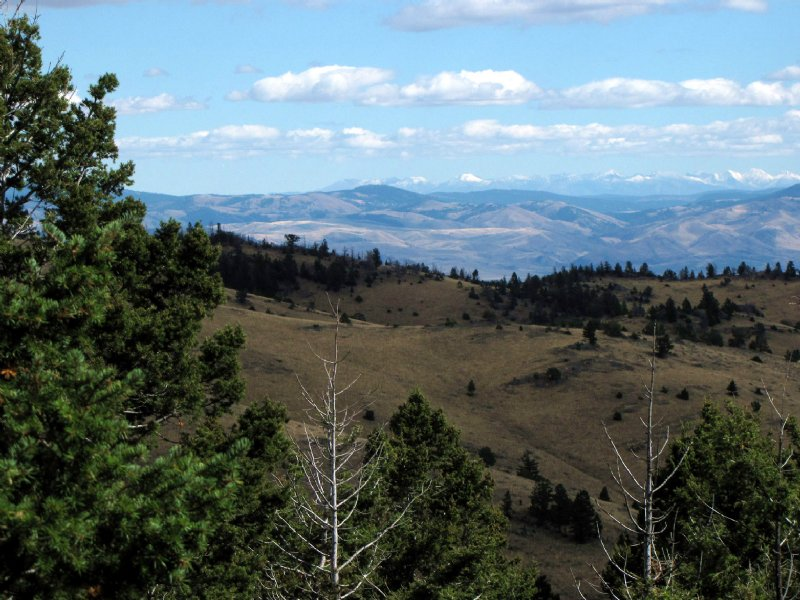52 Acres Surrounded By Public Land : Townsend : Broadwater County : Montana
