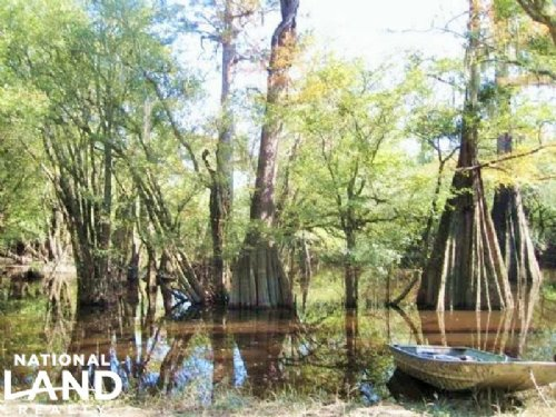 Jefferies Creek Recreational Land : Pamplico : Florence County : South Carolina