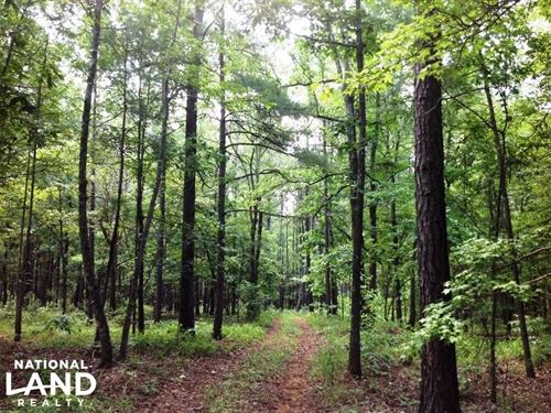 Timber Investment Tract : Woodland : Talbot County : Georgia