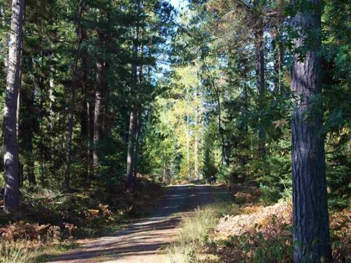 Off Baraga Plains Rd, Mls 1090770 : Baraga : Michigan