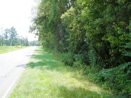 17 +/- Acres In Bowman : Bowman : Orangeburg County : South Carolina