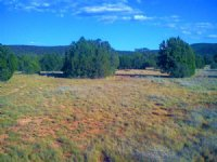 36 Acre Az Ranch With Home