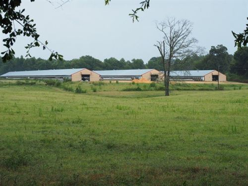 Poultry Farm With 60 Acres, Mt. Oli : Mount Olive : Covington County : Mississippi
