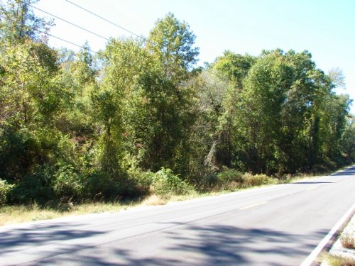 Homesite, Minifarm, Convenience : Salem : Lee County : Alabama