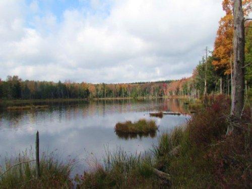 Waterfront Home Private Pond 90 Ac : McDonough : Chenango County : New York