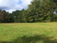 36.8 Acres With Small Cabin : Appling : Columbia County : Georgia