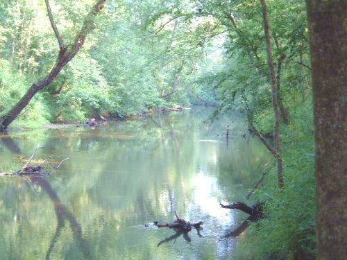 Ogeechee River Jewel : Gibson : Glascock County : Georgia