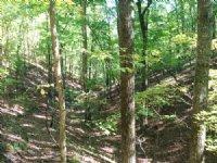 Reduced Vinson Mountain Road : Rockmart : Polk County : Georgia