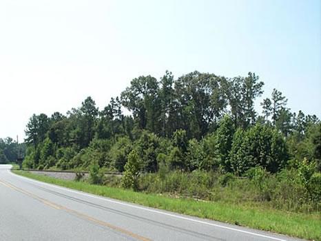 78 Acres : Guyton : Effingham County : Georgia